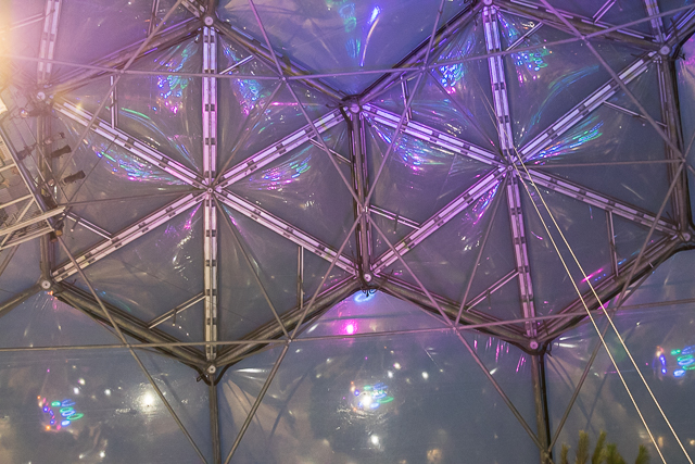 Eden Project Wedding - The roof of the Biomes at Eden Project with our premium lightshow